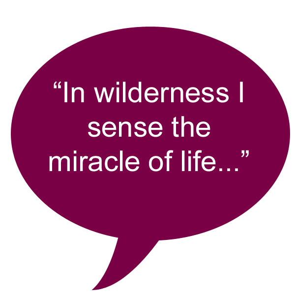 quote_lindberg_wilderness