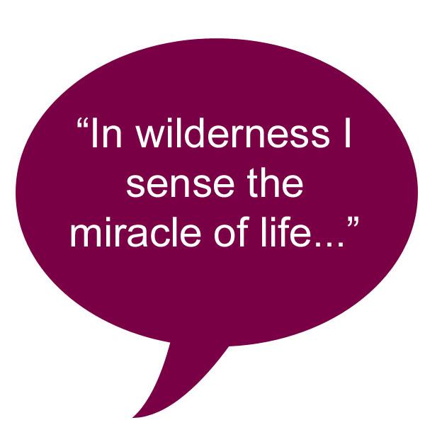 quote_lindberg_wilderness