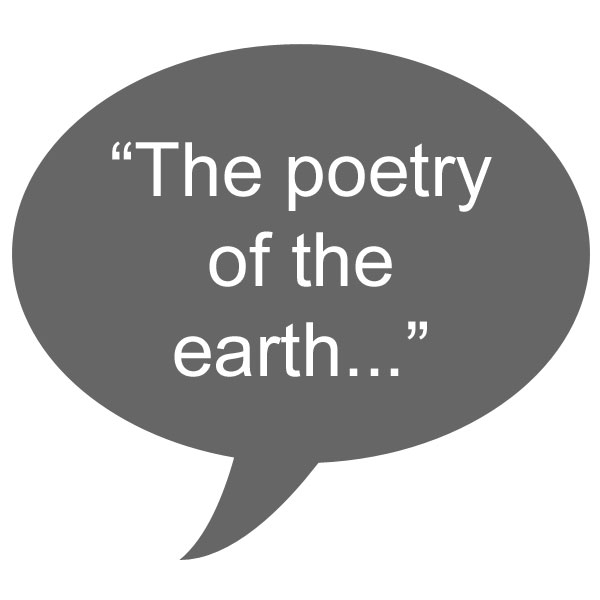 quote_keats