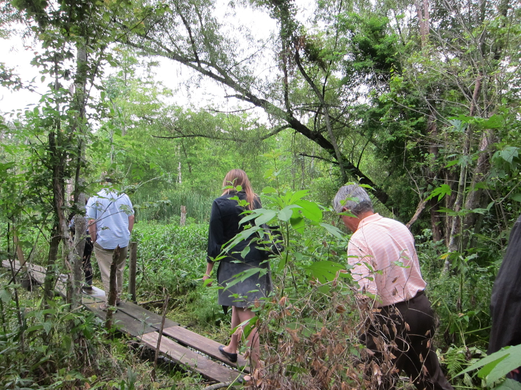 Workshop attendees board the trail winding through Tierra Resources' carbon offset project.