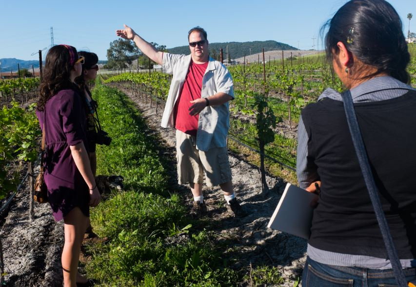 Jon DiPiero of Ricci Vineyards shows us the acres of grape vines that have been fertilized with compost.