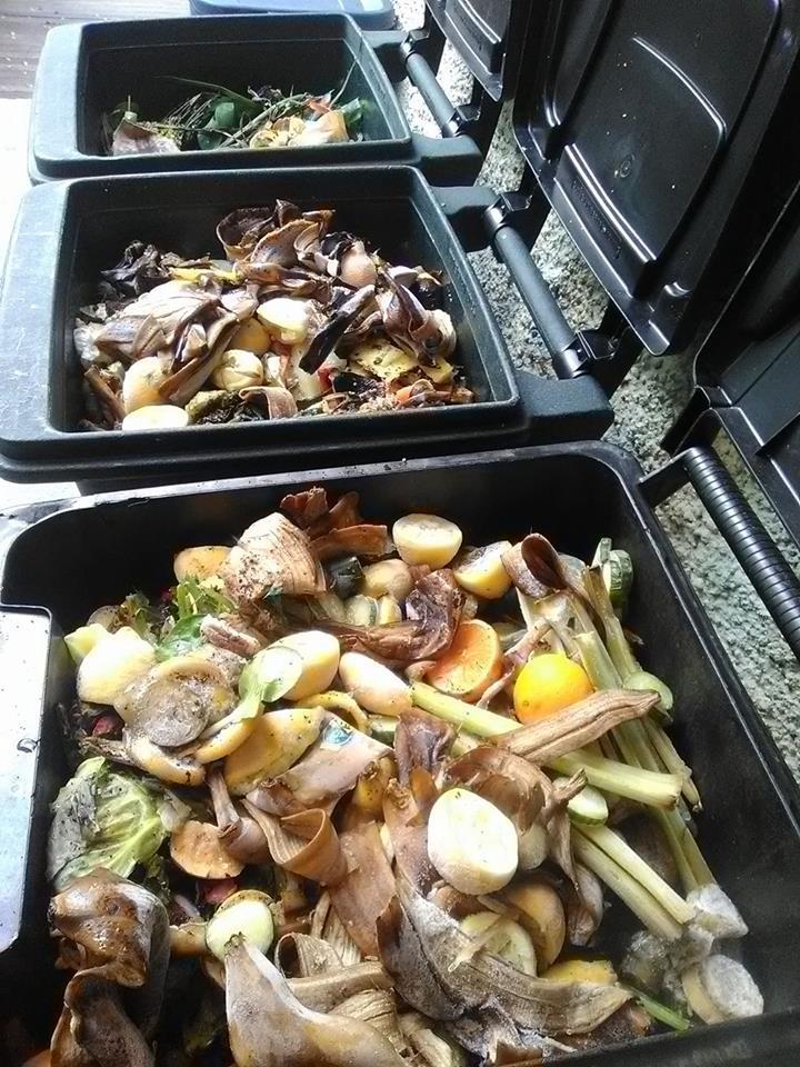Figure 4: New Orleans Public Library food scrap drop-off location.