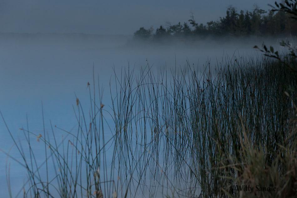 Misty Aqua-7436