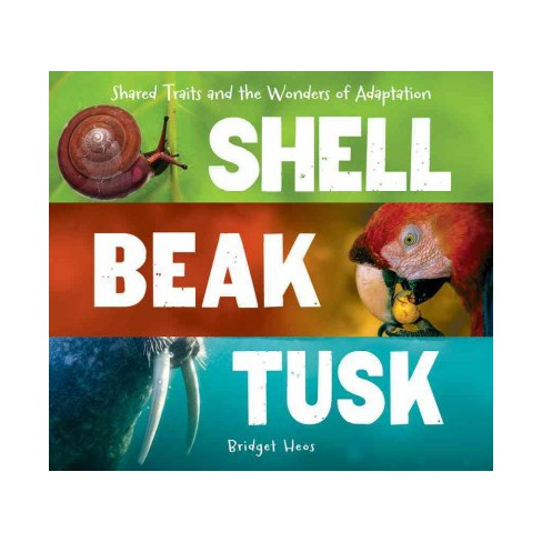 Shell, Beak, Tusk Shared Traits and the Wonders of Adaptation.jpg