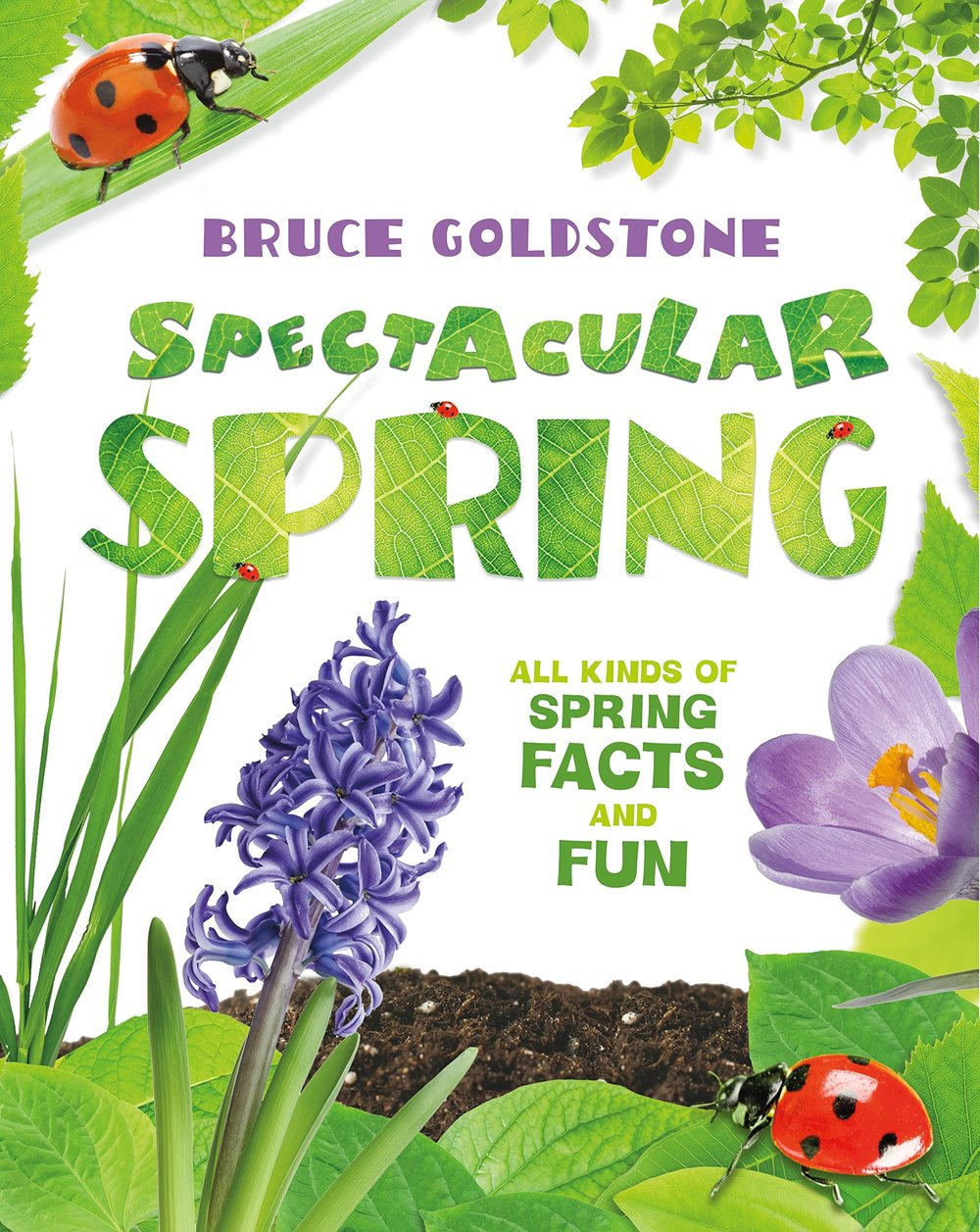 Spectacular Spring All Kinds of Spring Facts and Fun.jpg