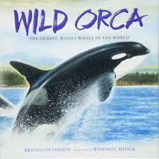 Wild Orca.jpg