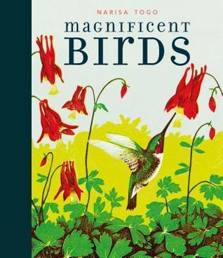 Magnificent Birds.jpg