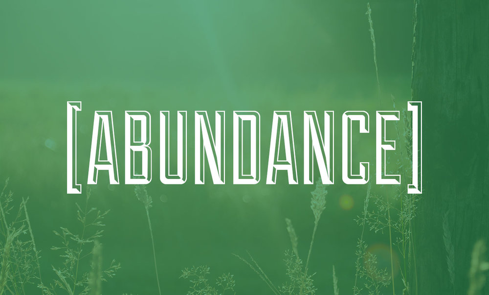 Abundance Sermon Series