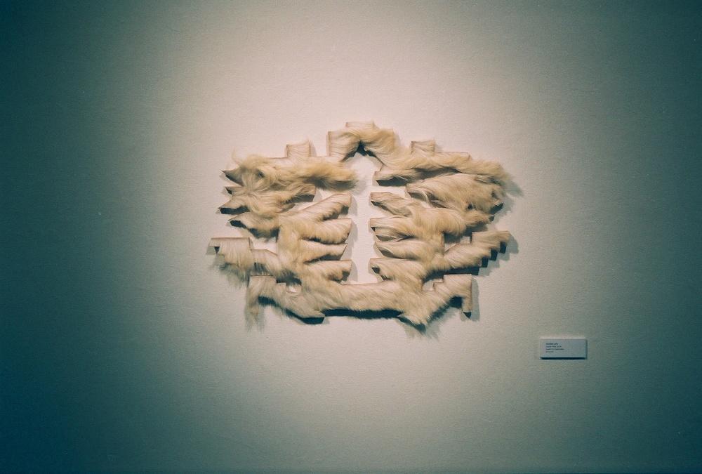 Jourdan Joly /  Future Past, 2015  /Laser Cut Goat Hide / 3 ft x 4 ft