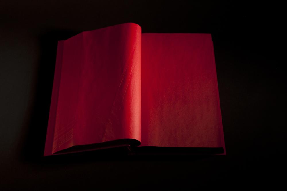 8 libro rojo.jpg