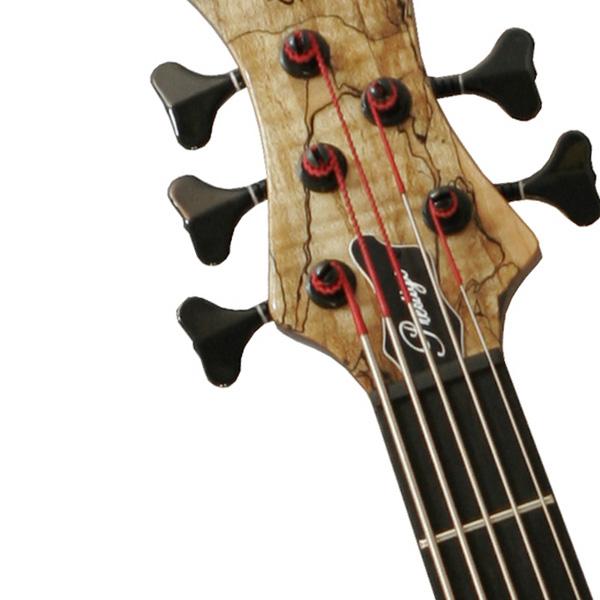 Bass 002.jpg
