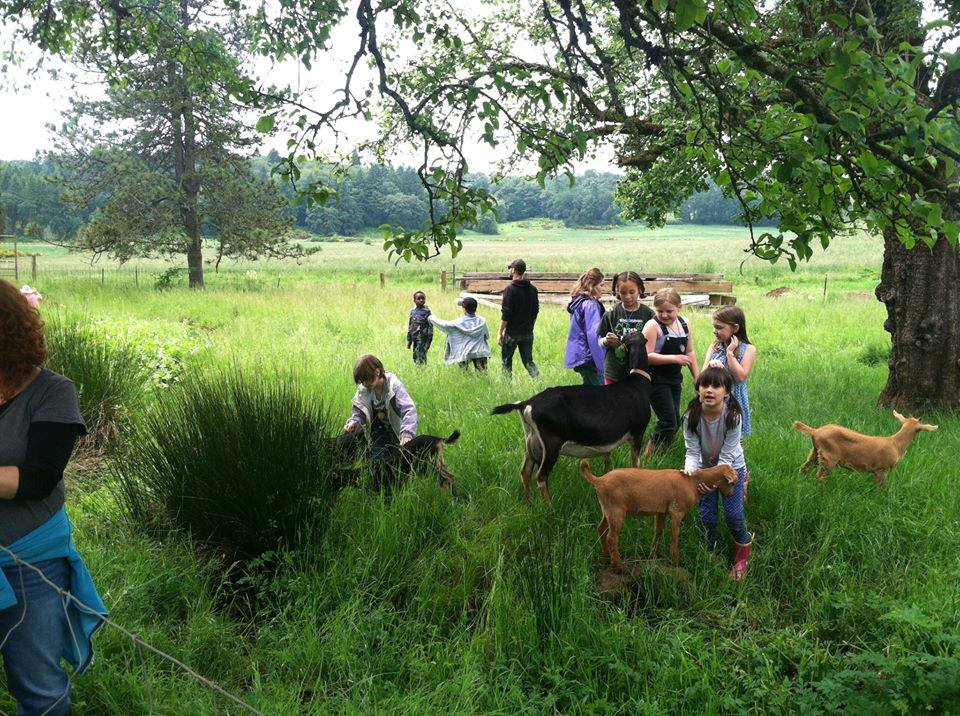 oregon summercamps
