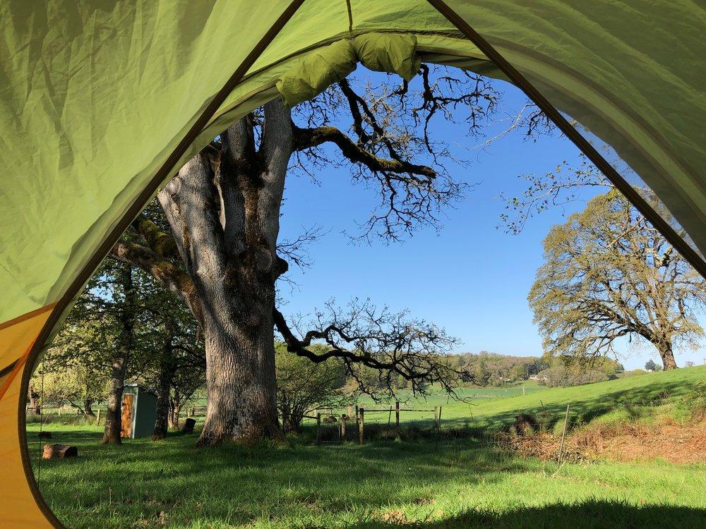 camping near the oregon gardens