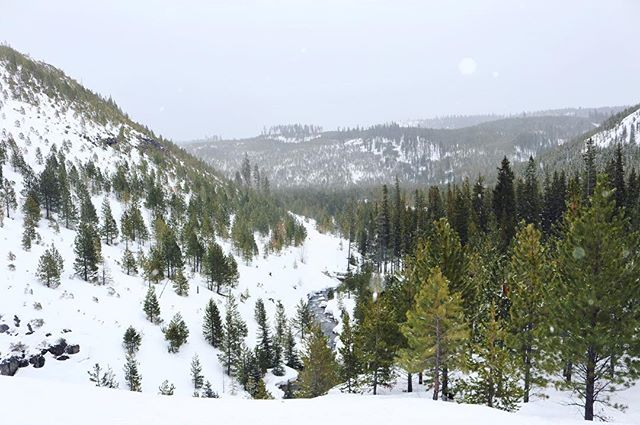 First summit view in my new state :) The snow was so deep and compact that we were standing level with the top of the guard rails meant to keep people from falling off the side of the falls 😅 #bitchesinbend