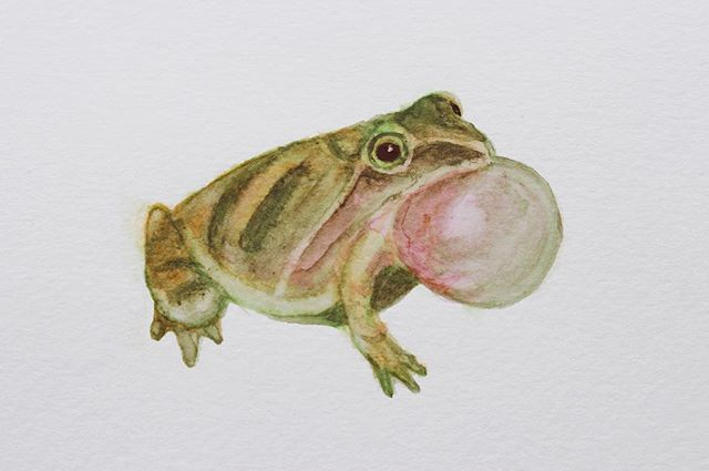 The earth wakes up sooner in Oregon than it did back east, and the whole city is green and lush and blooming 🌸 I painted this lil Spring Peeper to celebrate! They were the soundtrack of warm nights where I grew up.  #watercolor #frog #spring