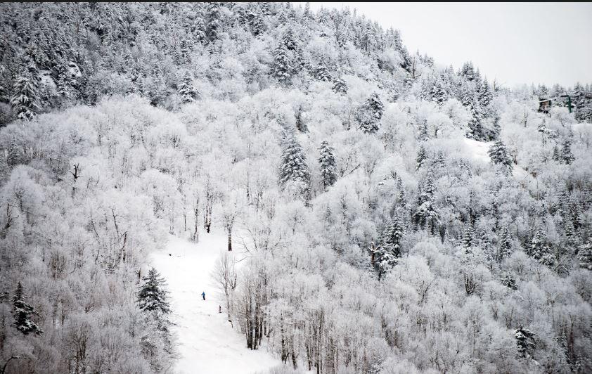 Vermont 2.JPG