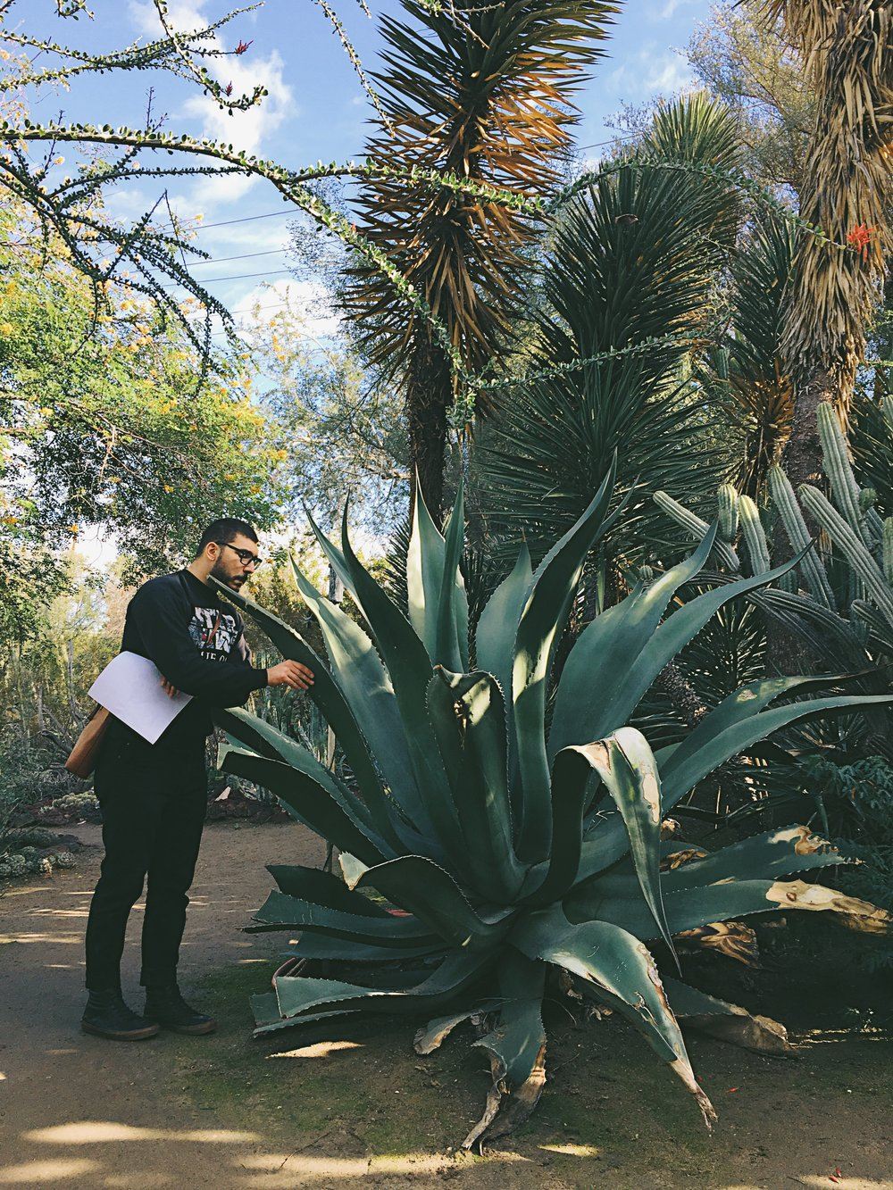 For your viewing pleasure: my Greek husband, carrying my purse, checking out a gigantic aloe plant.