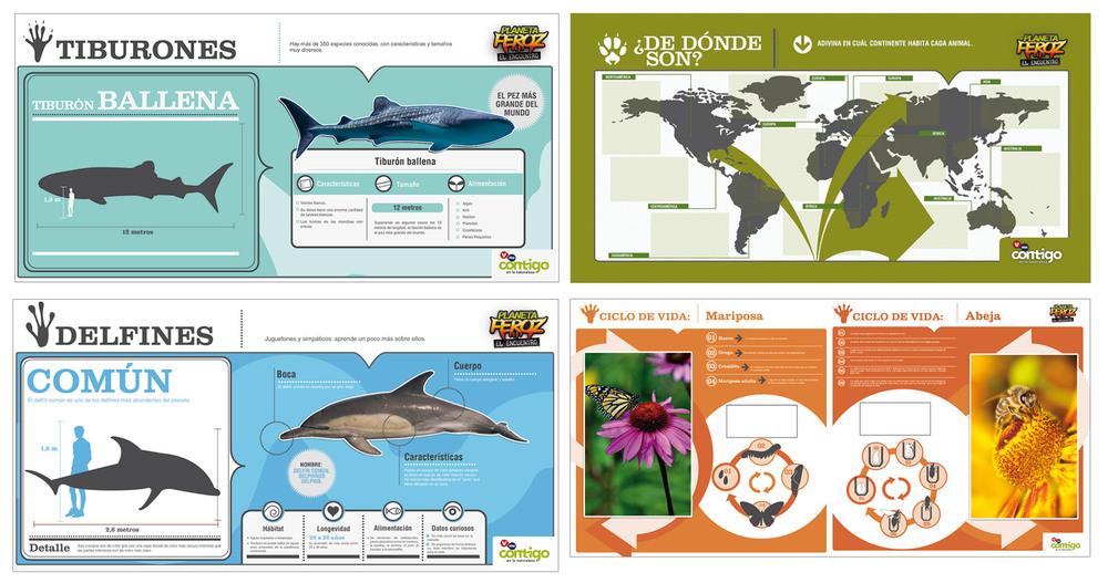 Infographics & Maps