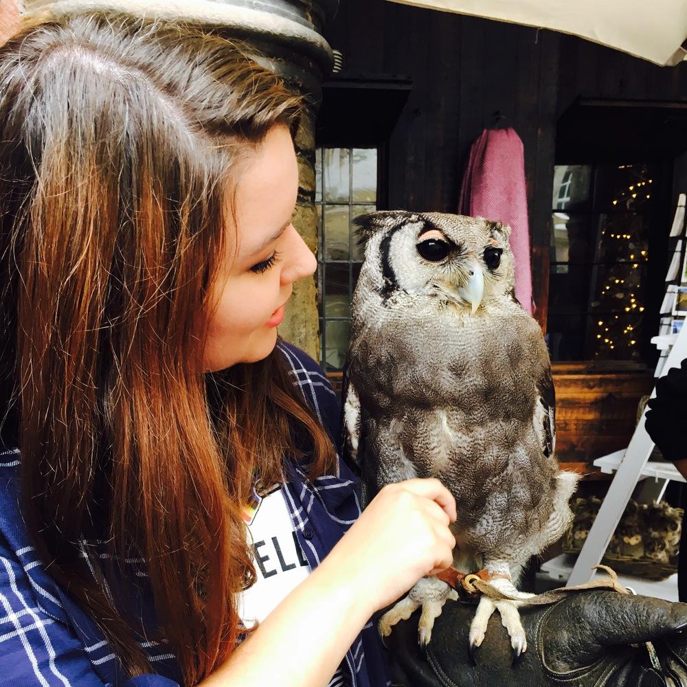 Floyd the Owl