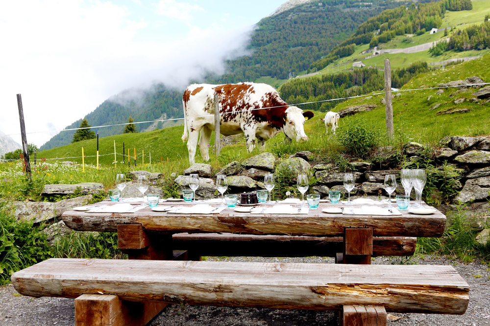jessiebush_wethepeople_switzerland_travel2.jpg