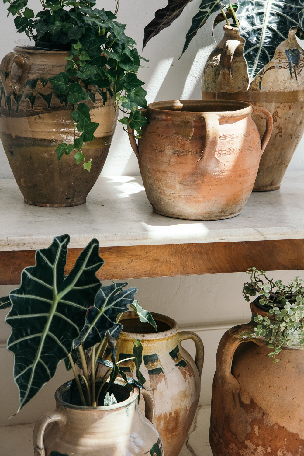 sunday_shop_planters-2.jpg