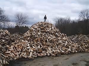 firewood hill.jpg