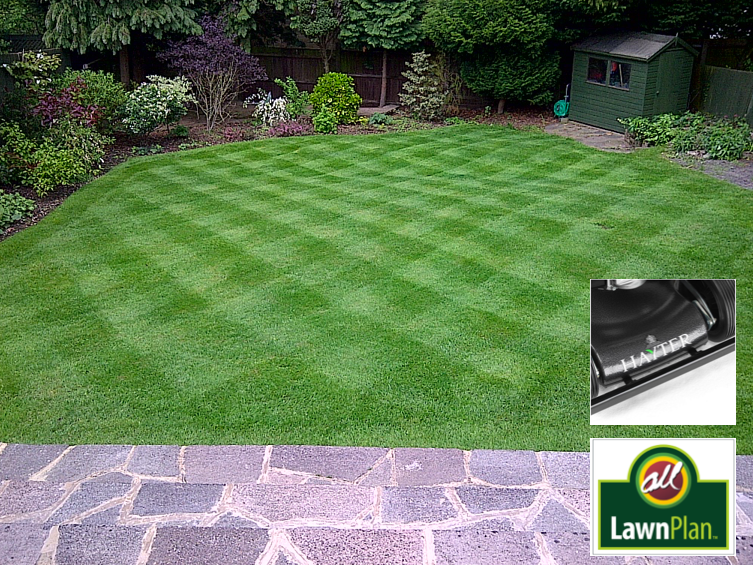 A Lawn Plan lawn being cut with a Hayter 48 Pro