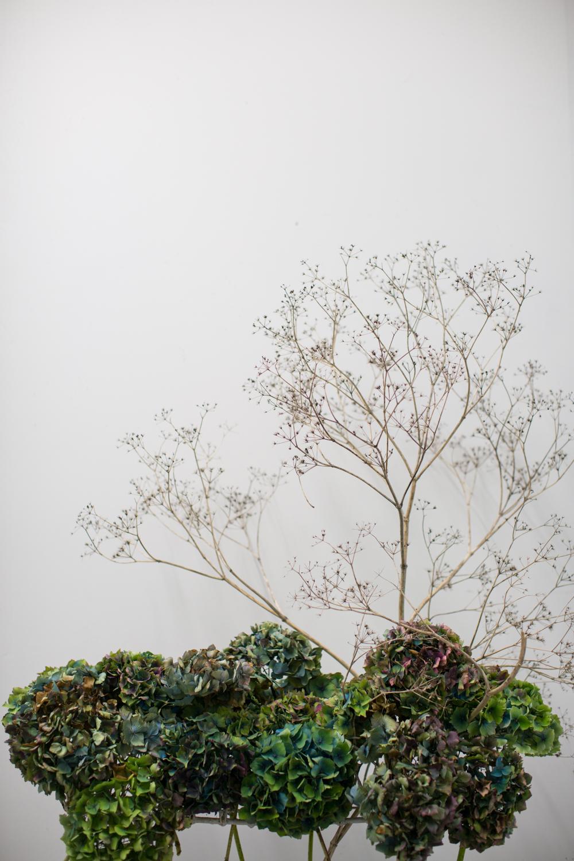 Paper rock flower our portfolio mightylinksfo