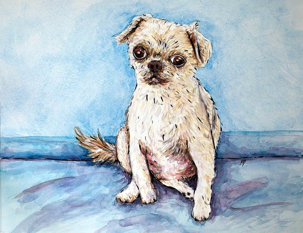 Watercolor Pet Portrait of Cookie.