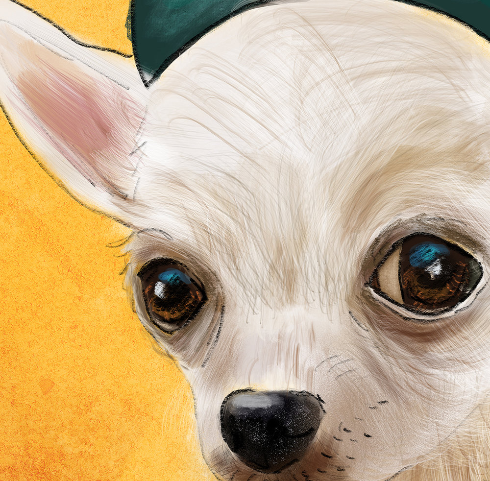 Close up detail of the Girl Scout Chihuahua