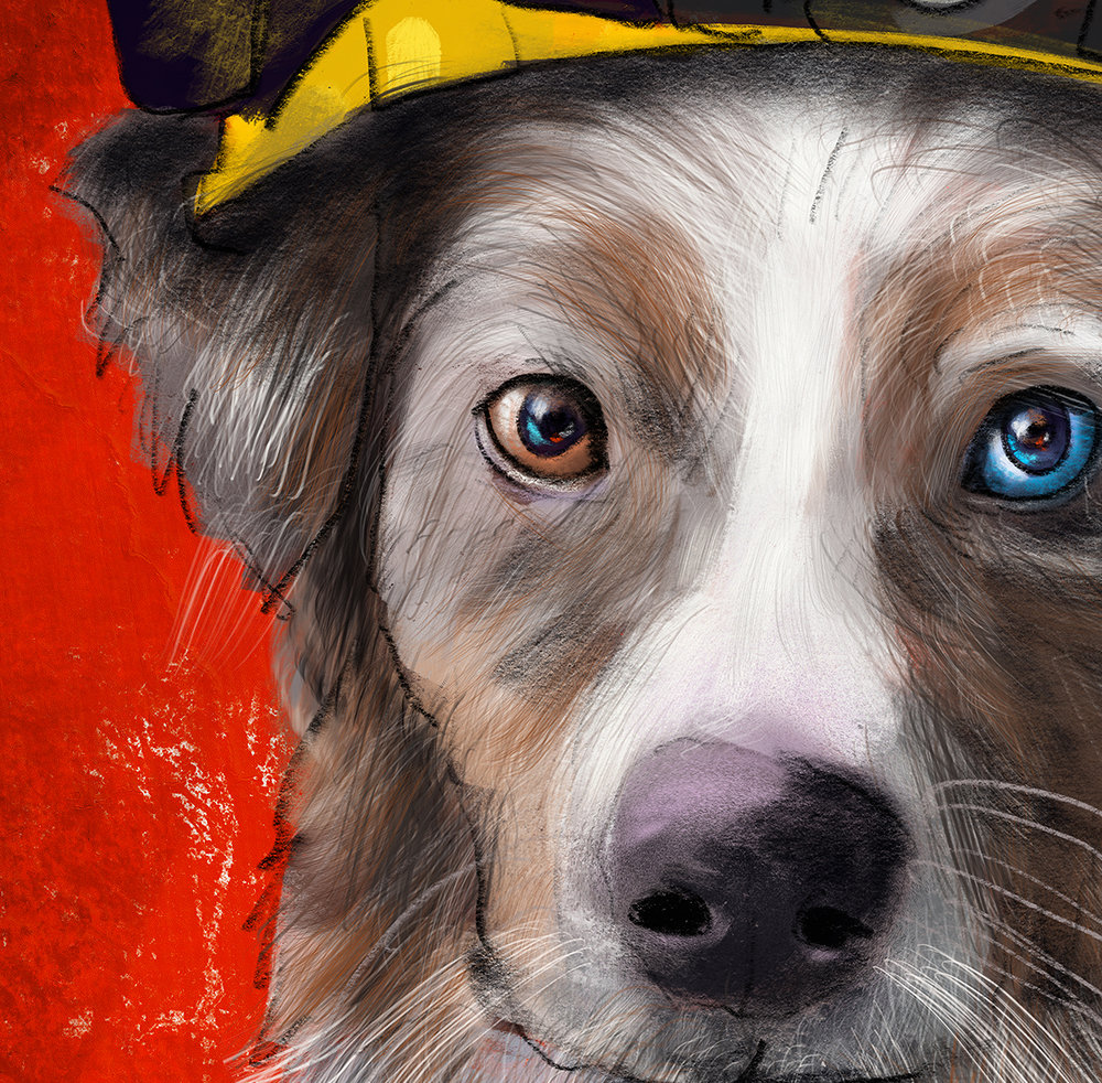 Firefighter Aussie Shepherd uniform pets detail