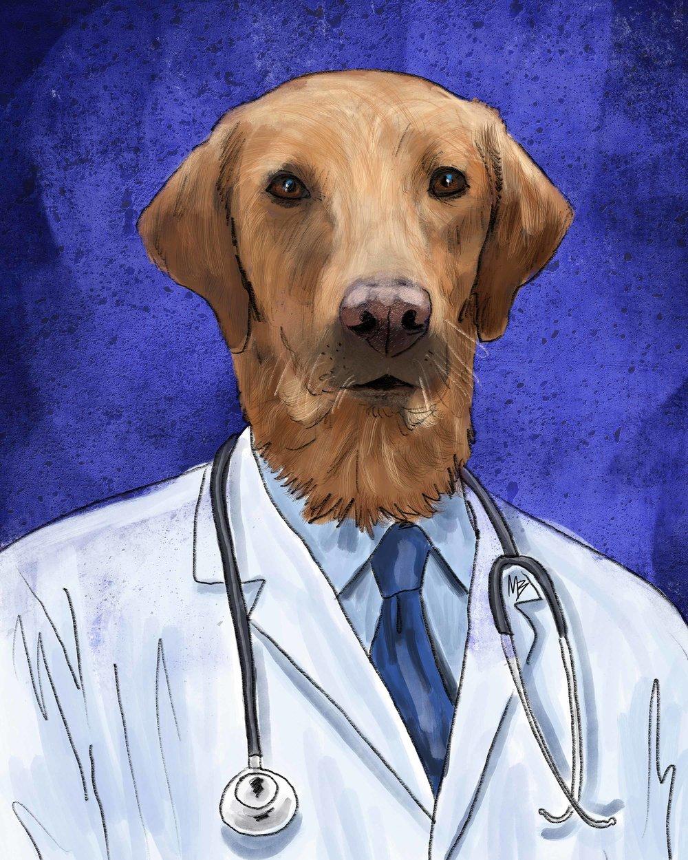 Doctor Labrador Retriever Uniform Pet