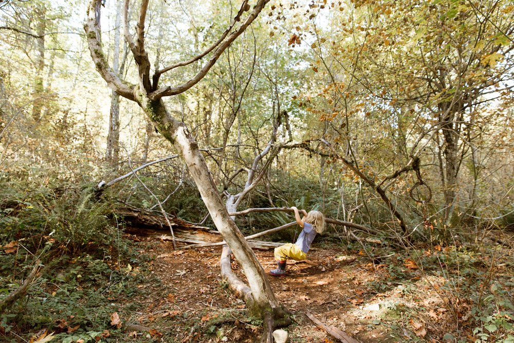 Sienna-Renee-Photography-Nature-Nuts-2977.jpg