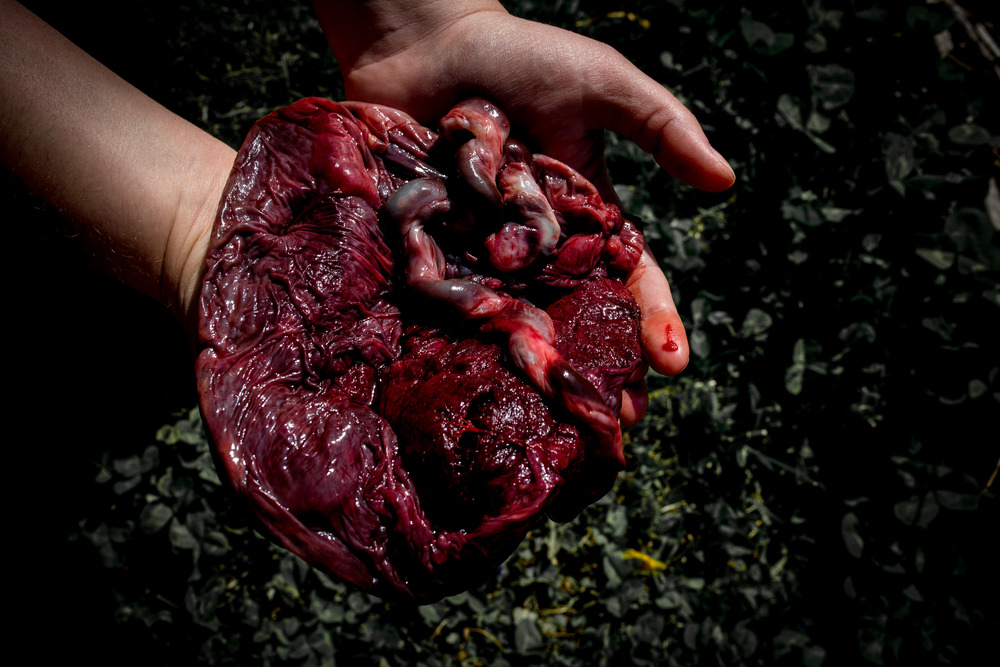 Matt+Steph_2016_Placenta (43 of 80).jpg