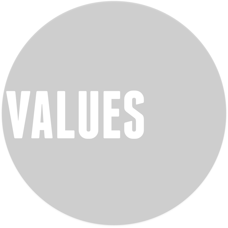 GCC values circle transparent.png