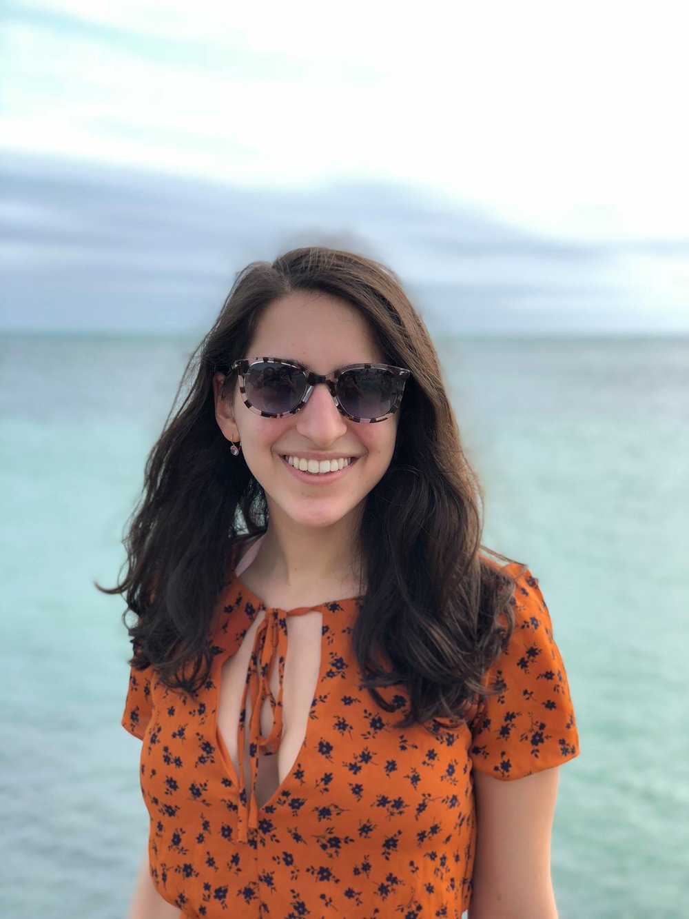 @ Sarah Brody-Bizar # CC — Economics & Art History %