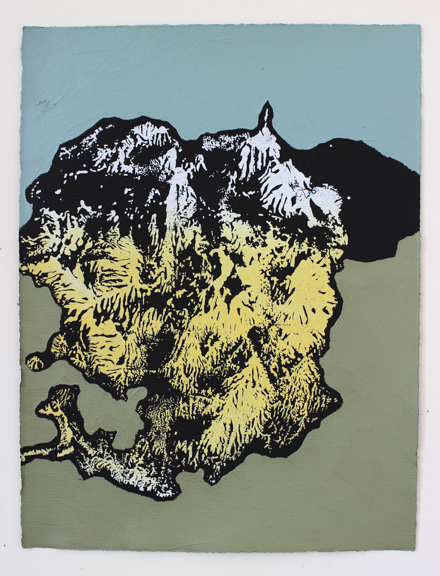 Landslide No. 2, 2014, acrylic and screen print on paper, 15.75 x 11.75""