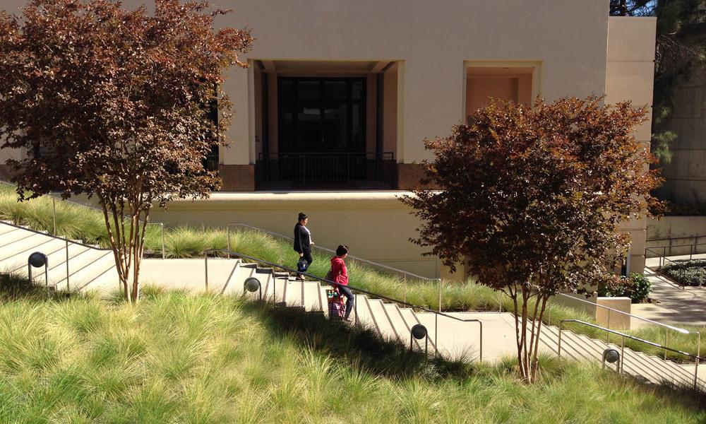 UCLA_6.jpg