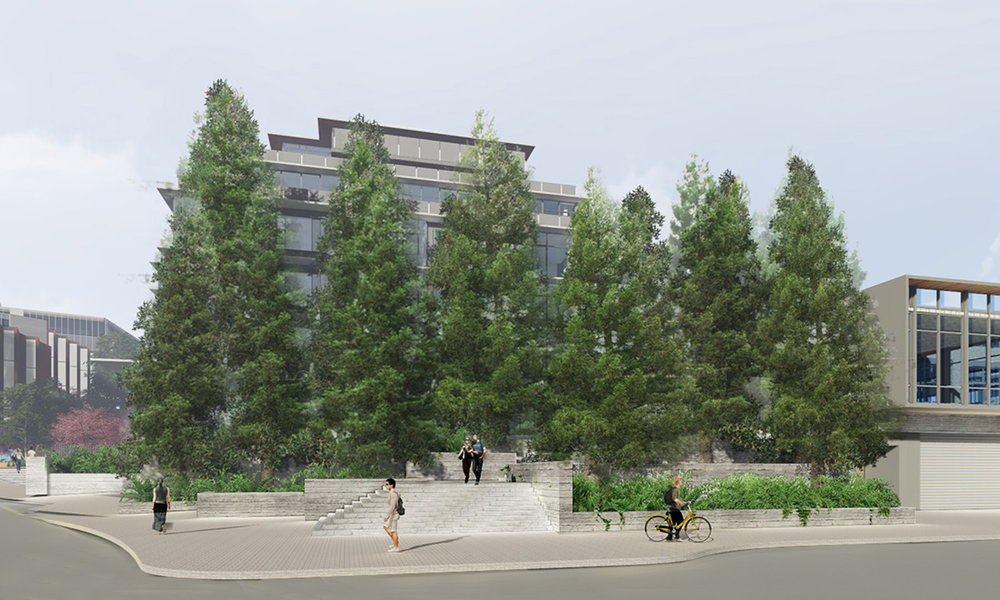 6_Pine Plaza.jpg