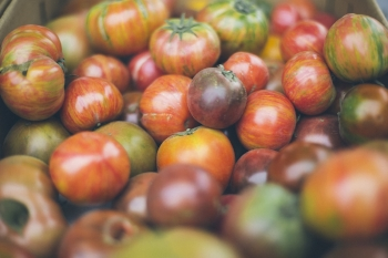 Heirloom tomatoes are in season right now so buy up!