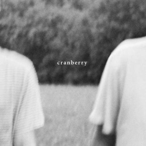 """Cranberry,"" Hovvdy's second album, is masterfully simple. ( Courtesy photo )"
