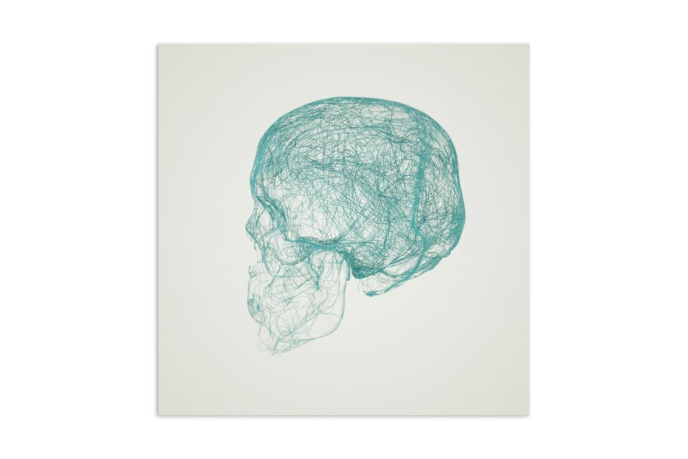 skull_print.jpg