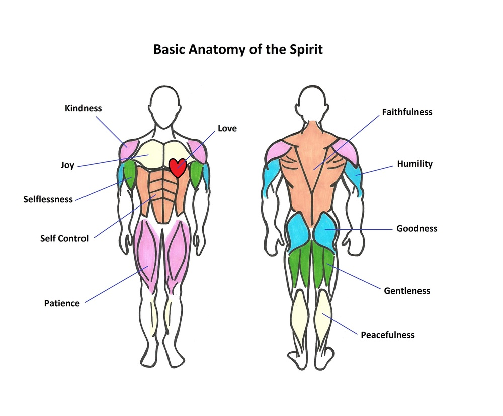Exercise for the Spirit — FreeBody Nutrition