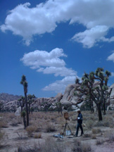 Glenn Dean painting in Joshua Tree National Park