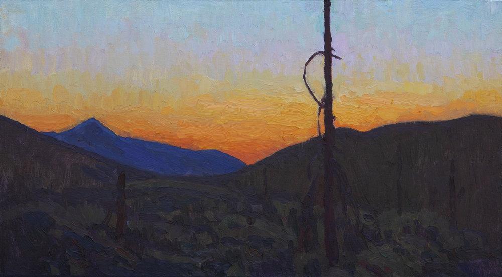 "Eric Merrell, American Landscape, 2016, 11"" x 20"""
