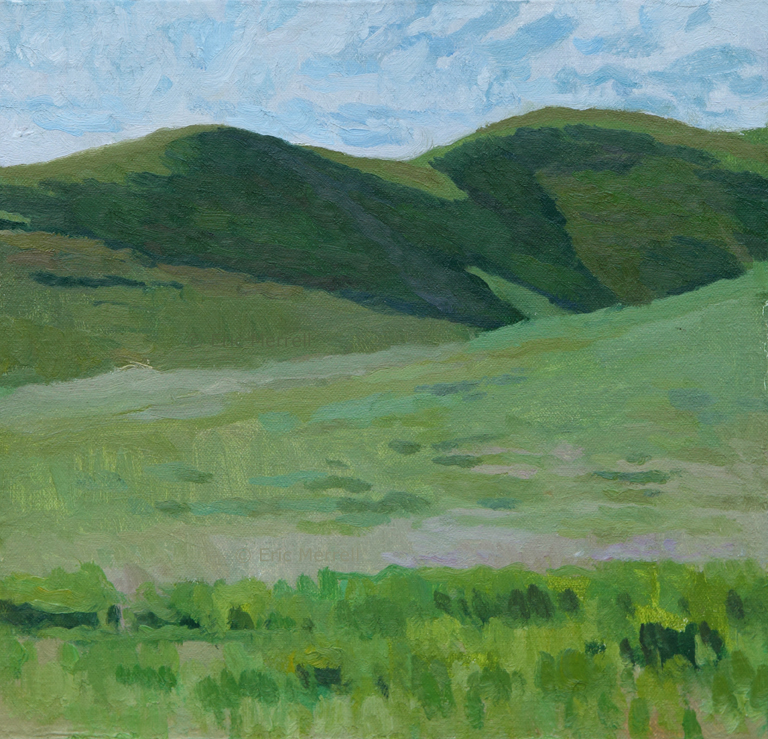 Undulating Grasslands