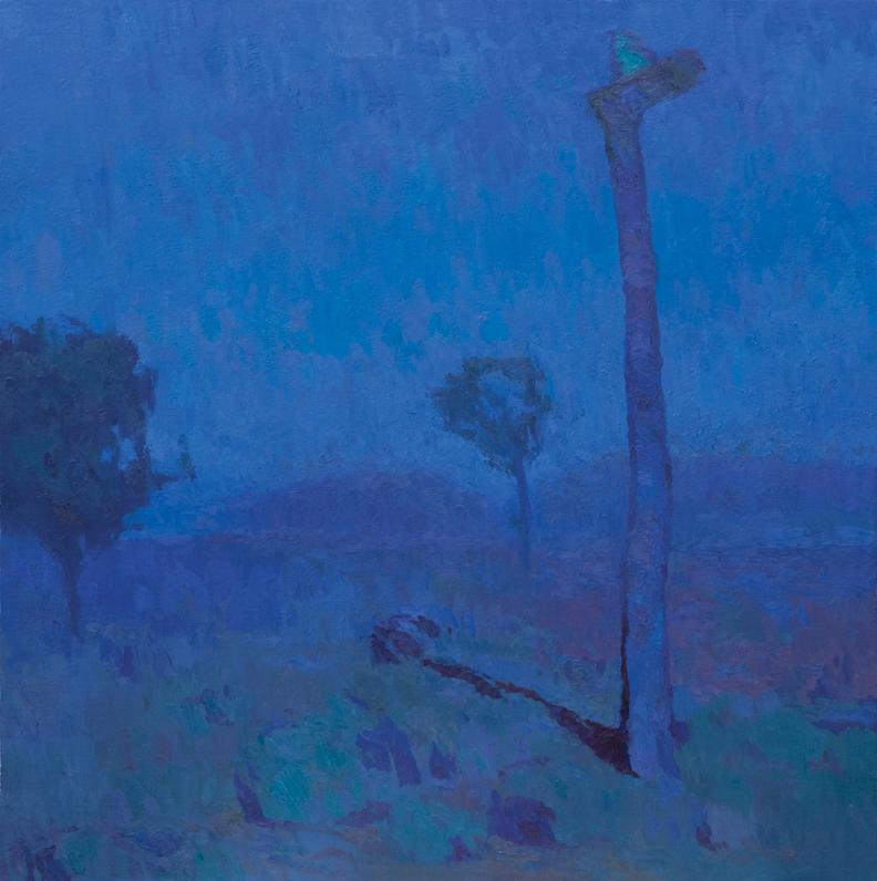 Joshua Tree Nocturne