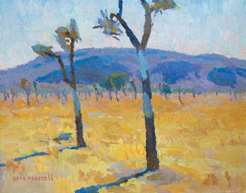 Desert Exposure