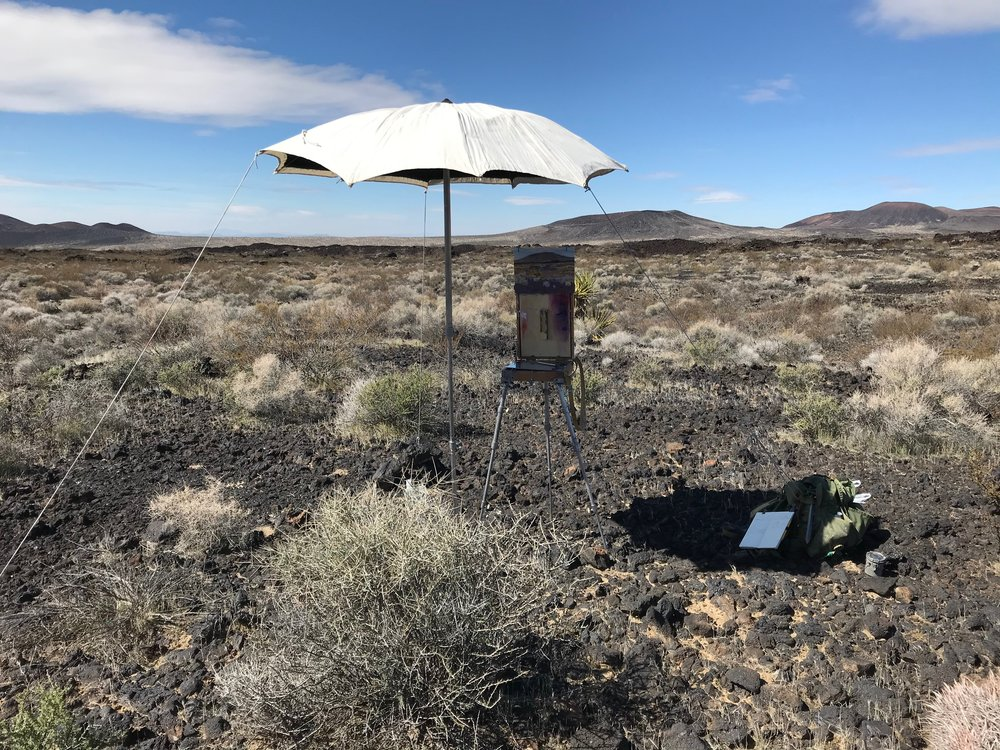 Painting in a desert wilderness surrounded by cinder cones.