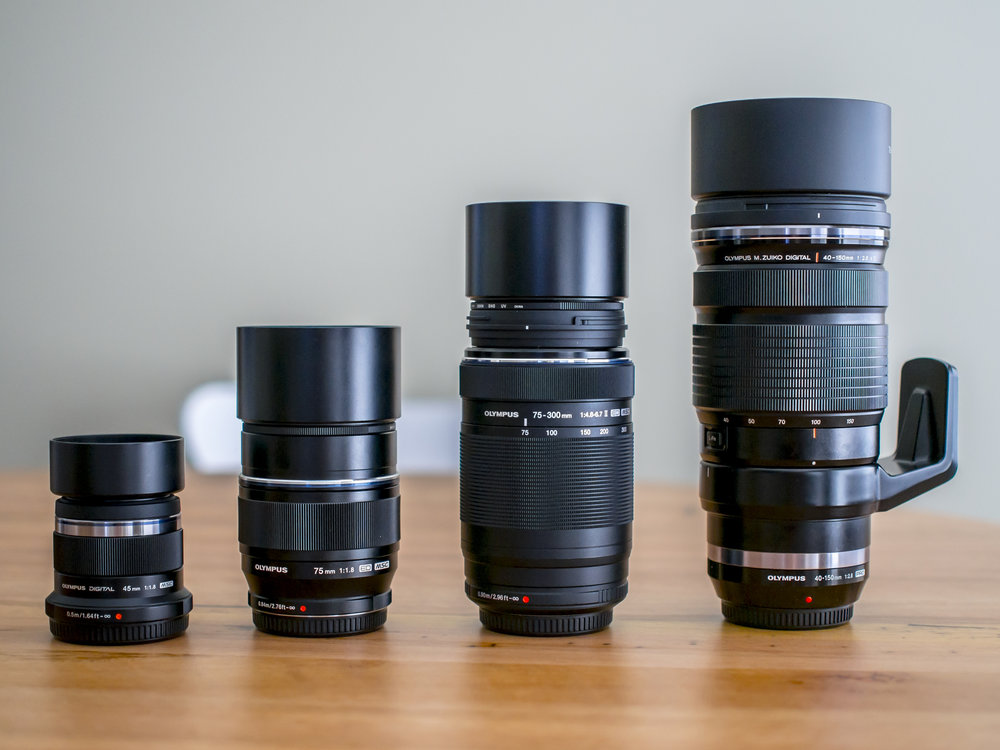 Left to right; A  first  ring 45 f1.8 (the nifty fifty on full frame or short portrait lens of crop format). The  second  ring (FF), easily corrected and average fast short tele/ third  ring (CF) fast medium tele 75 f1.8. The  second  ring 'bit better than basic kit 75-300 F slow zoom (all formats) and the  fourth  ring 40-150 f2.8 pro grade tele zoom.